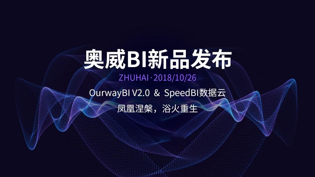奥威BI软件